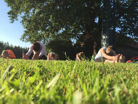 Yogalehrerausbildung Yogaausbildung lizenziert Münster