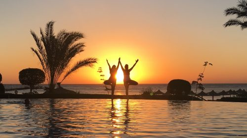 yoga-unter-palmen2